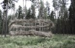 objekt z nalezených větví .velikost:5mx11m.materiál : ocelová lana větve povaz